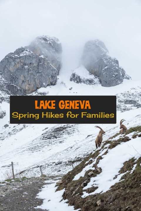 Spring Hikes near Lake Geneva for families. Loads of maps and tips on hiking with kids in The Alps