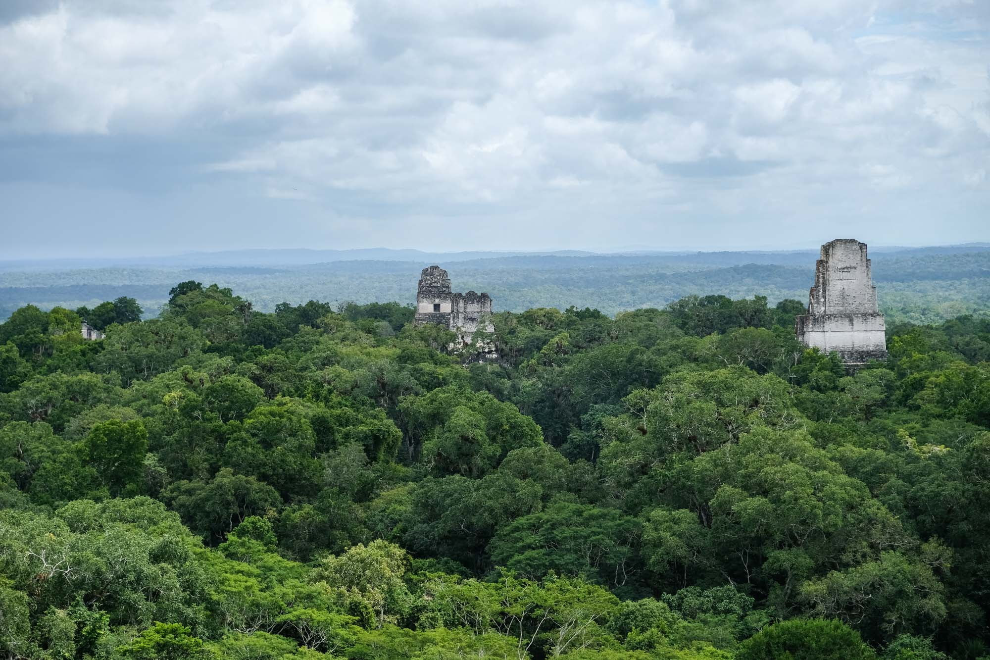 View over Tikal jungle
