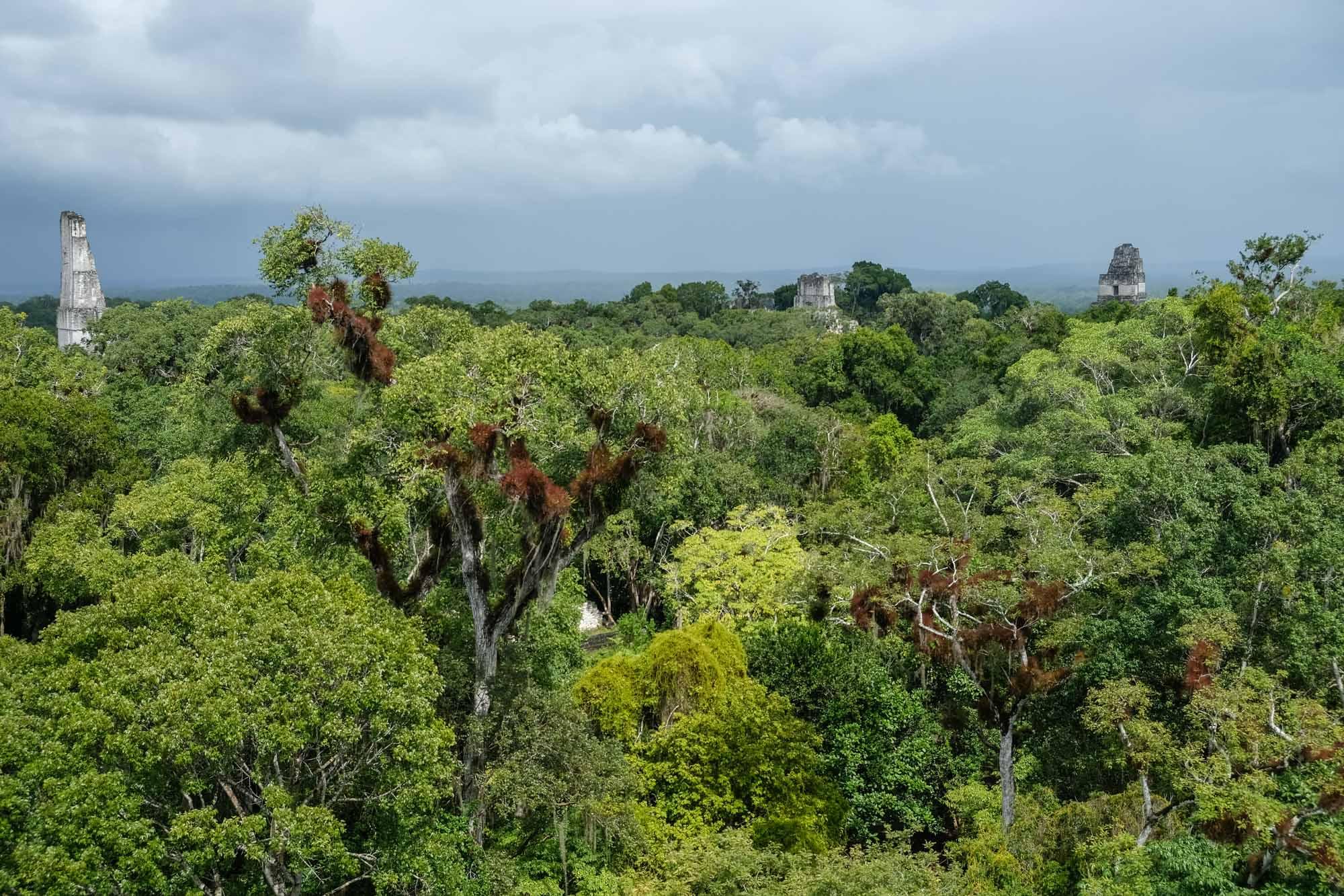 Tikal Temple IV, V, V1