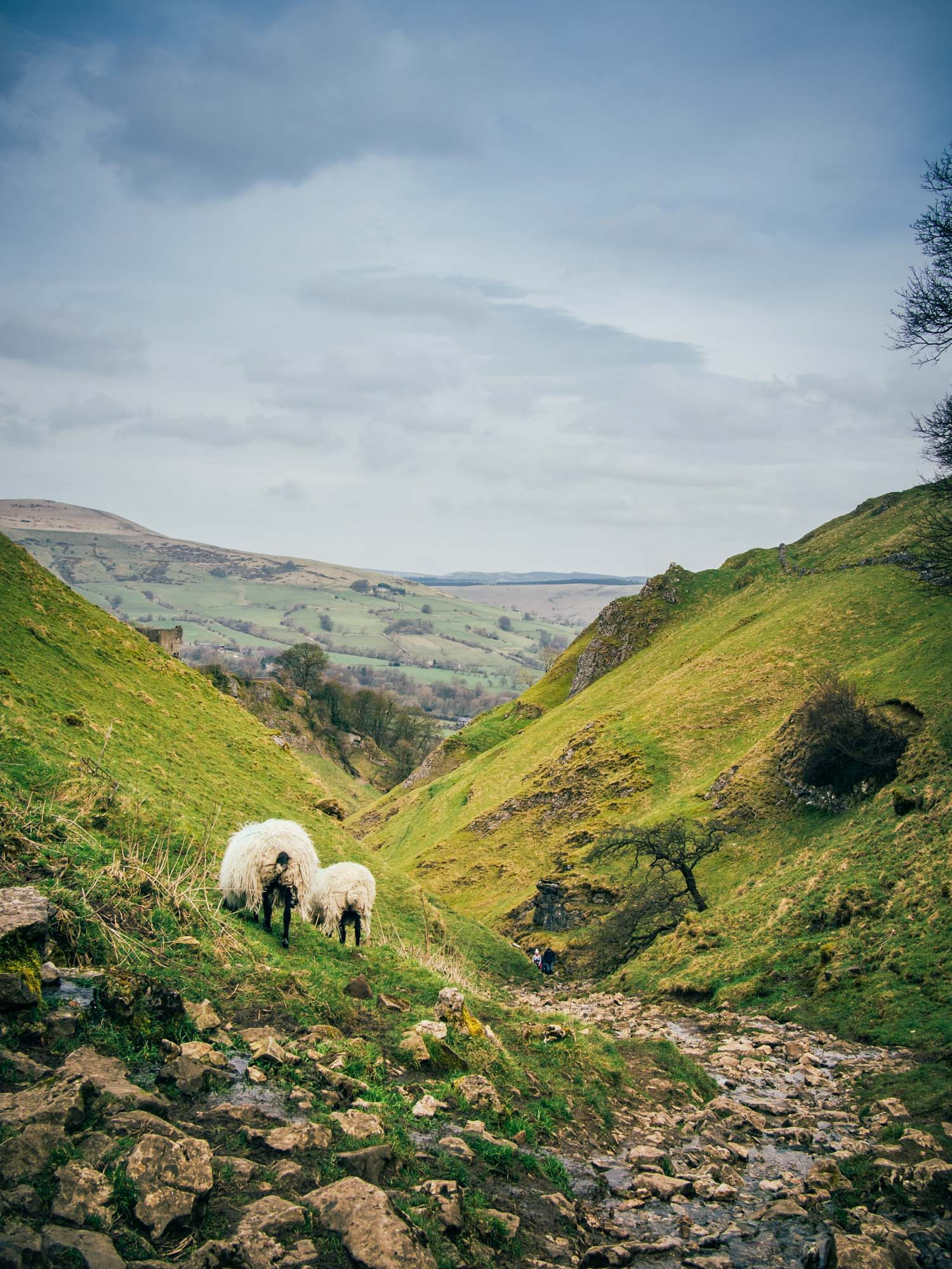 Road Trip Around The Derbyshire Dales