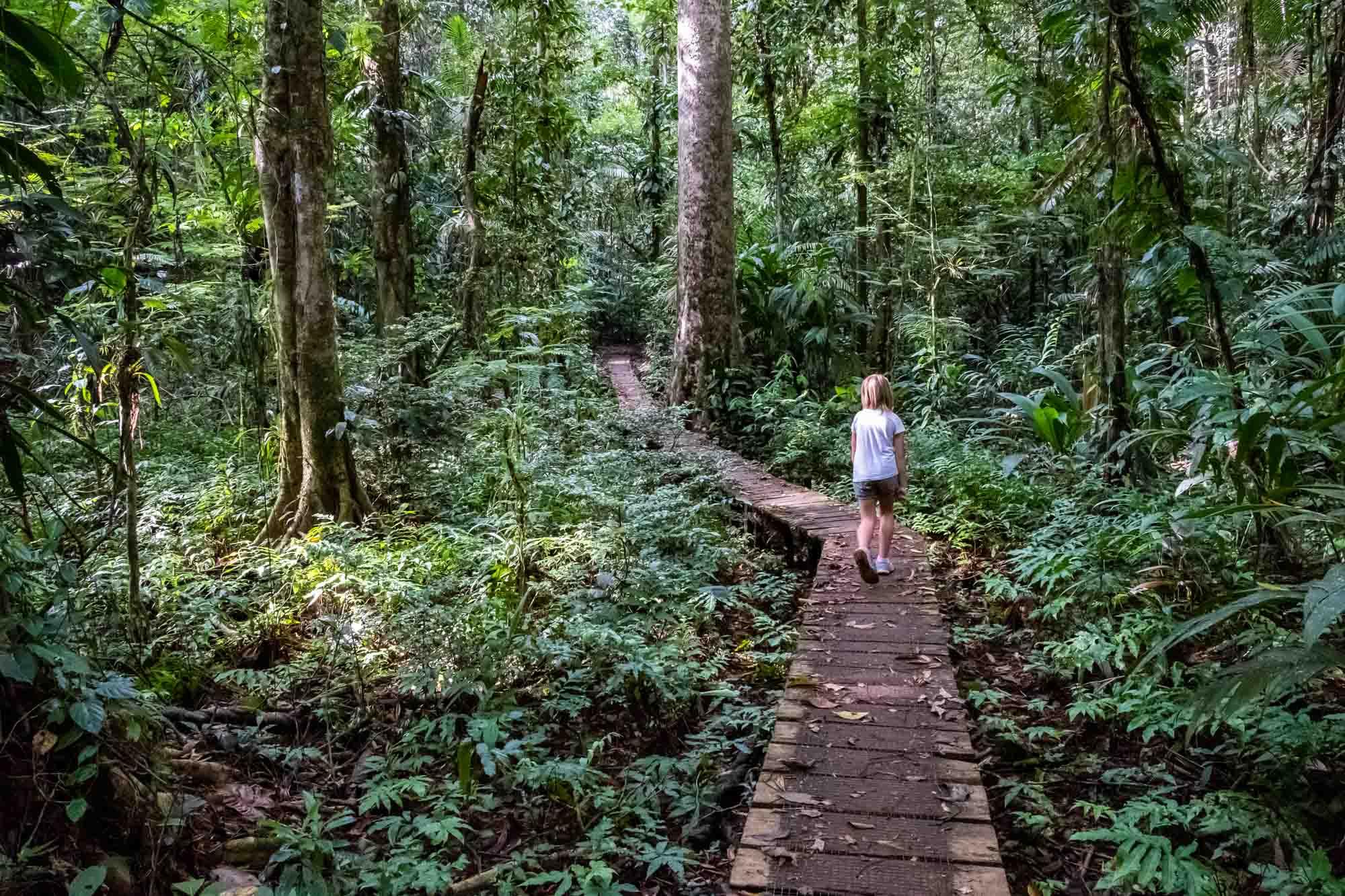 Tirimbina Self guided walk
