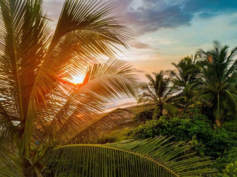 Costa Rica. World's smallest populations