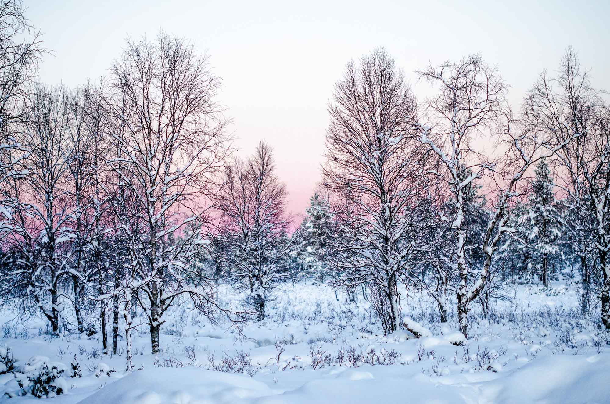 Glass Igloos Finland