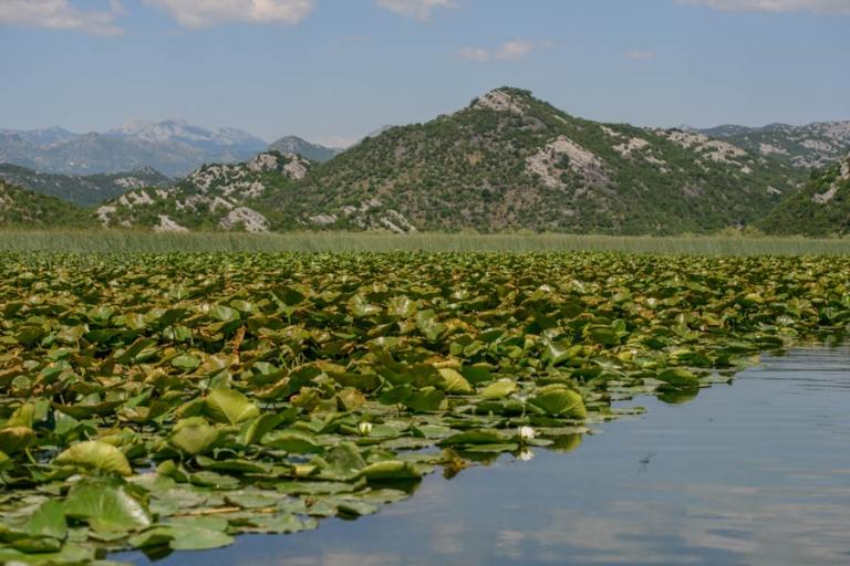 River Crnojevica Lake Skadar