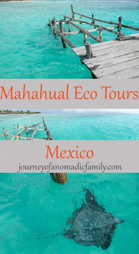 Looking for things to do on the Costa Maya? Mahahual Eco Tours provides tailor made tours in Spanish and English. Very kid friendly and perfect for adventurous families.