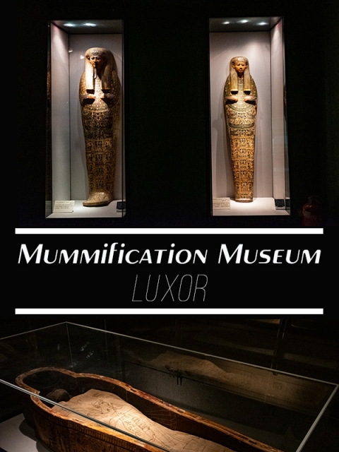 Visit the gruesome mummification museum in Luxor with your kids. It's a fascinating insight into ancient egyptian life and is a little bit gory!