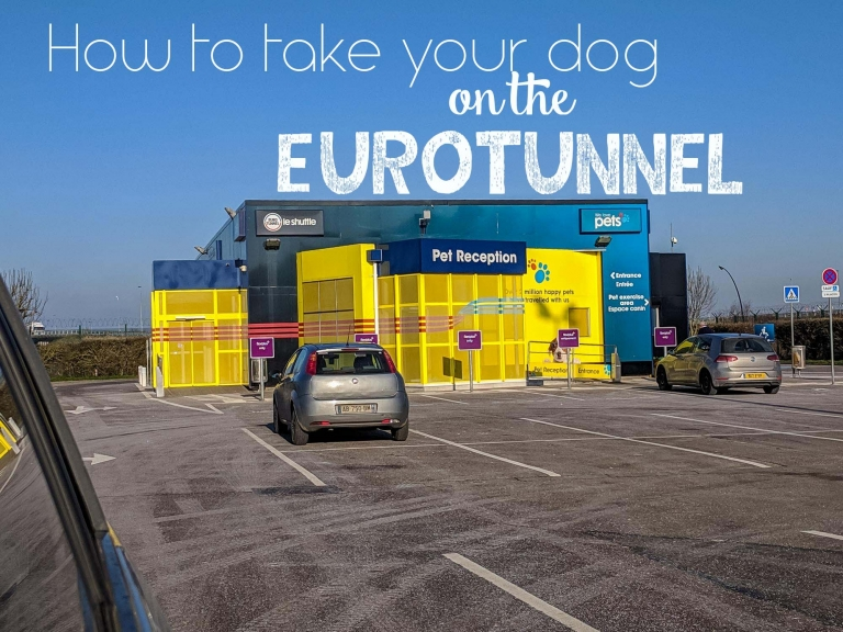 How to take your dog on the Eurotunnel.