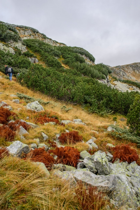 hiking the seven Rila lakes