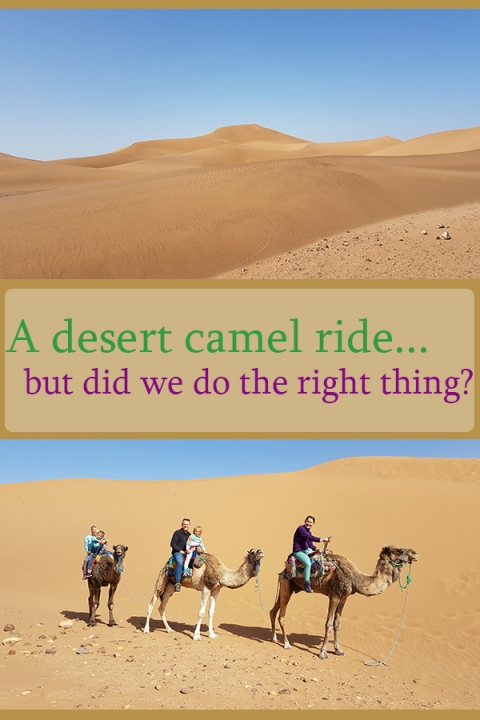 A desert camel ride for our youngest's birthday. But did we do the right thing? Morocco