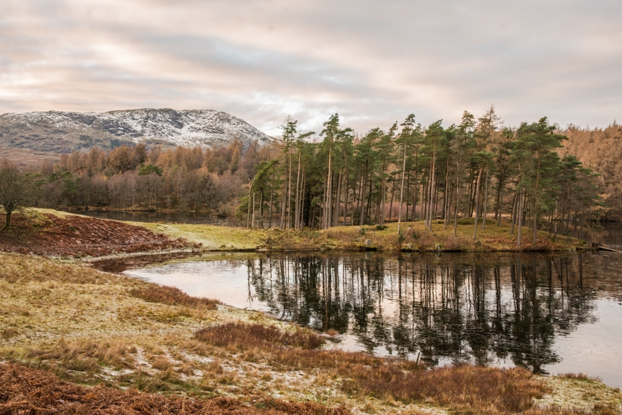 Tarn Hows – the frozen mountain lake