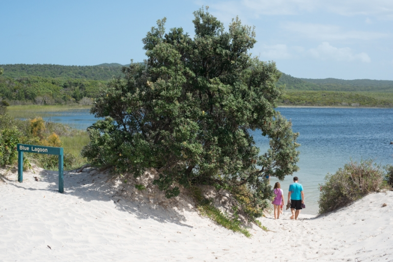 Moreton Island with kids
