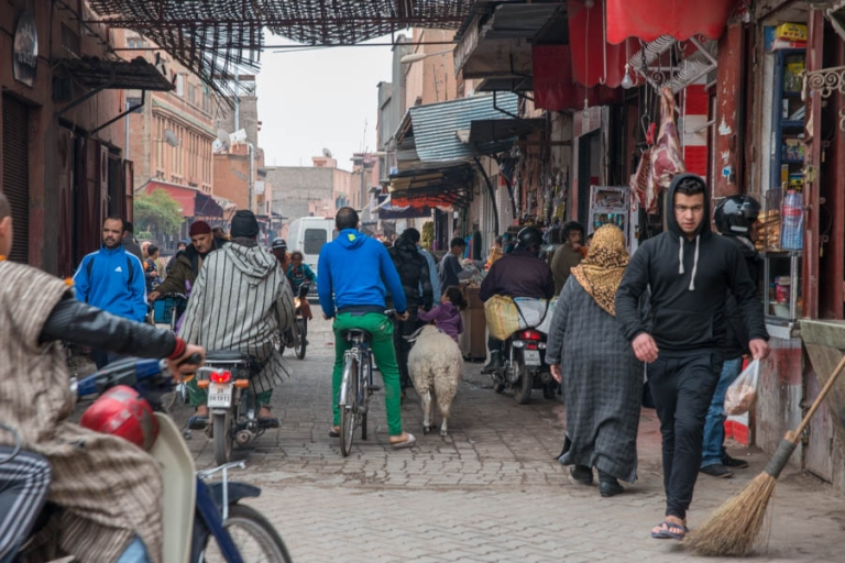 Sheep in Marrakech souk