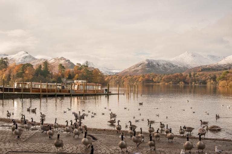 Derwentwater with birds in the foreground