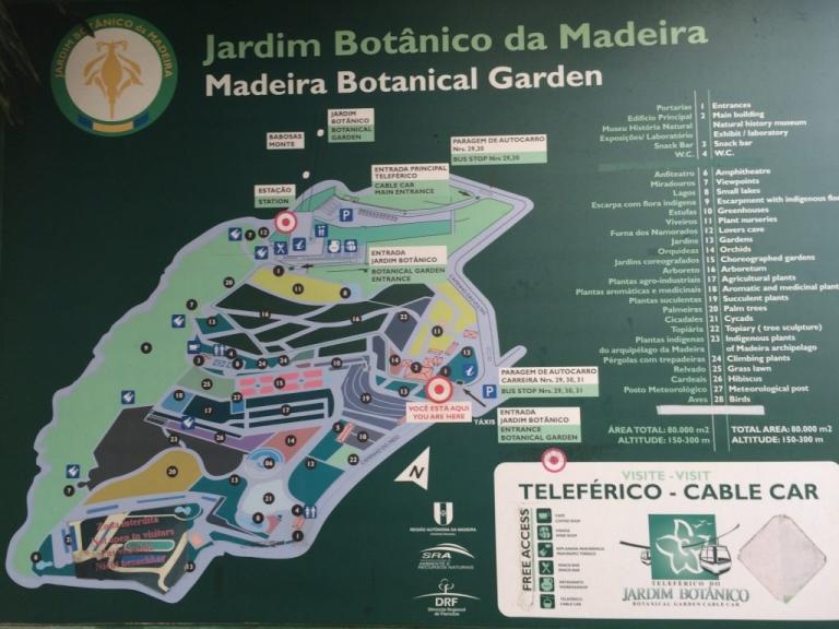 Jardim Botanico da Madeira